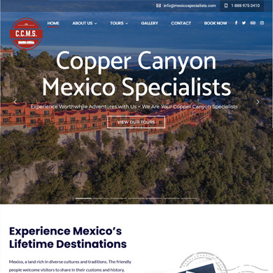 Mexico Specialists website screen capture